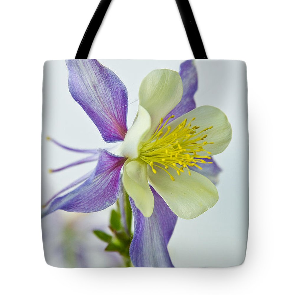 Colorado Rocky Mountain Columbine Tote Bag For Sale By James Bo Insogna