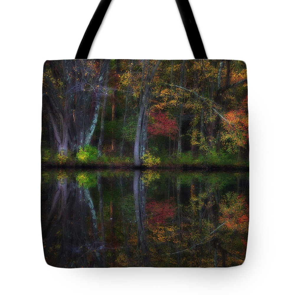 Woods Tote Bag featuring the photograph Colorful Forest by Karol Livote