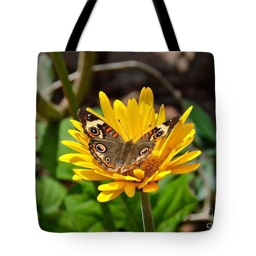 Butterfly Tote Bag featuring the photograph Common Buckeye by Carol Bradley