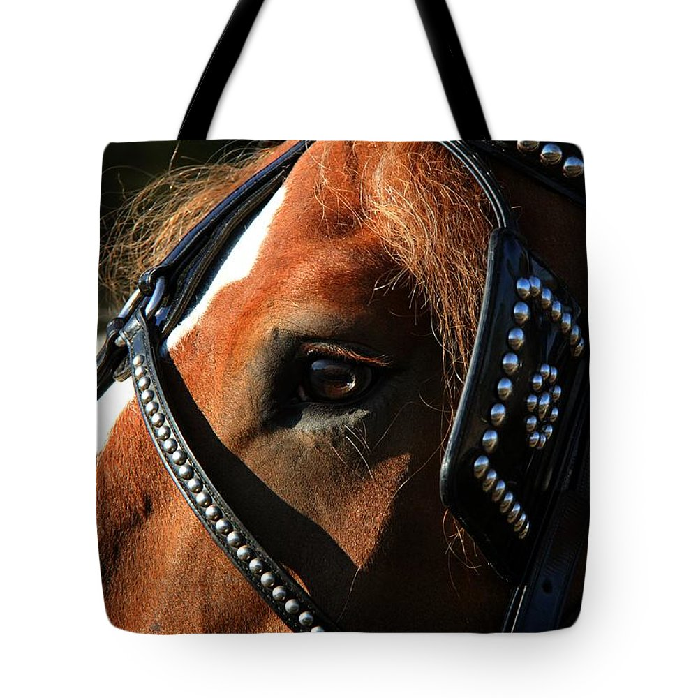 Animal Tote Bag featuring the photograph Concentration by Davandra Cribbie