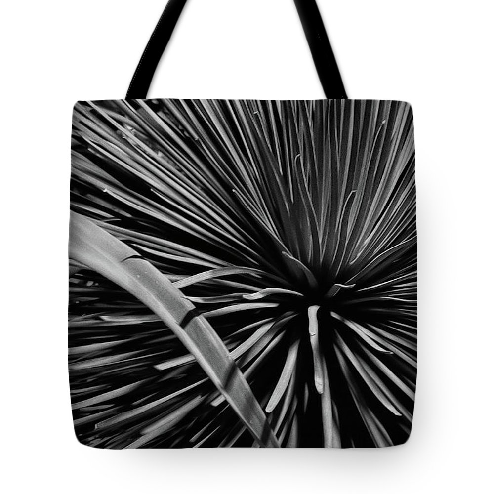 Guy Whiteley Tote Bag featuring the photograph Converging by Guy Whiteley