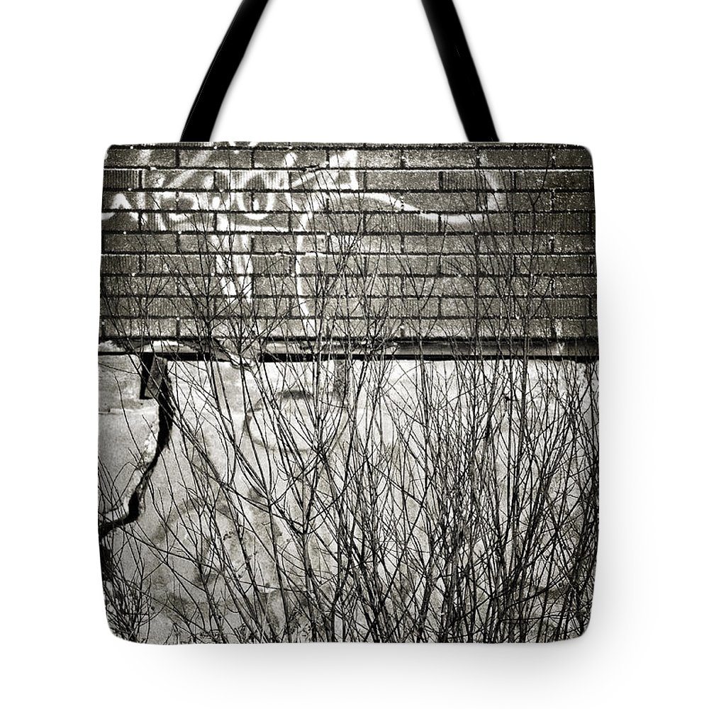 Abstract Tote Bag featuring the photograph Cook Hole by The Artist Project