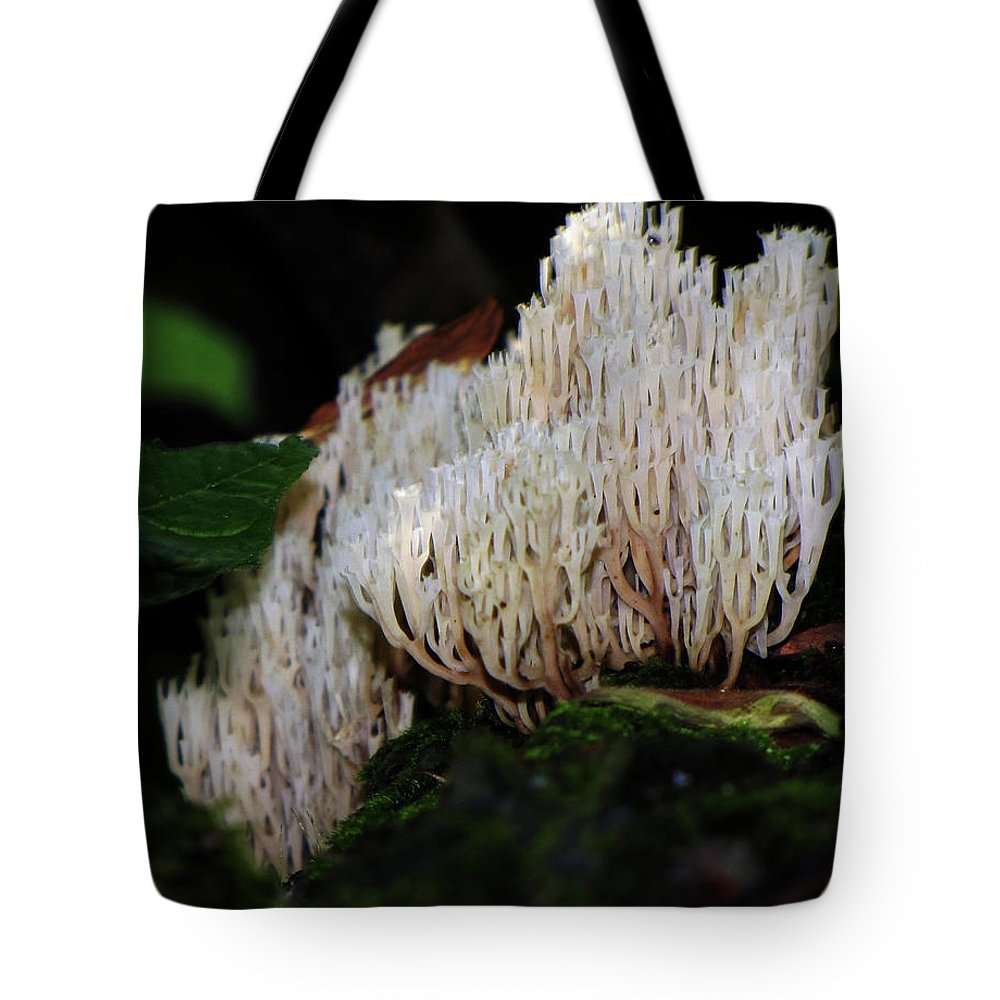 Mushroom Tote Bag featuring the photograph Coral Mushroom 2 by September Stone