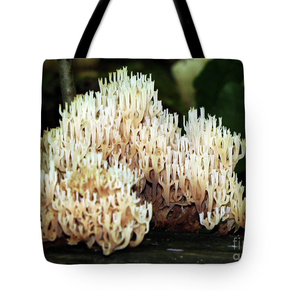 Mushroom Tote Bag featuring the photograph Coral Mushroom by September Stone