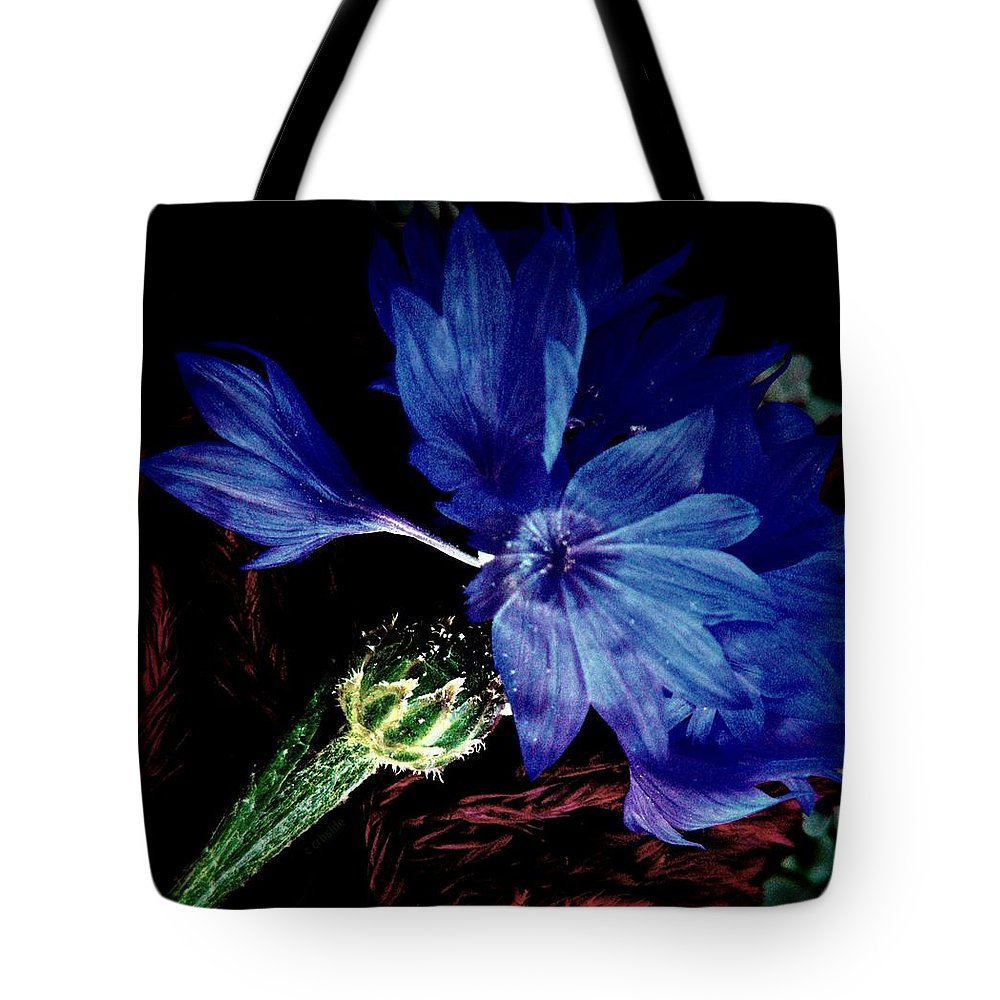 Nature Tote Bag featuring the photograph Cornflower by Chris Berry