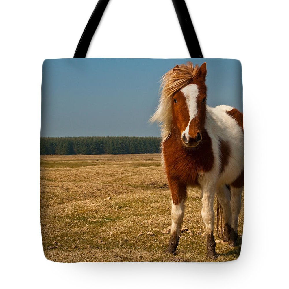 Pony Tote Bag featuring the photograph Cornish Pony by Rob Hawkins