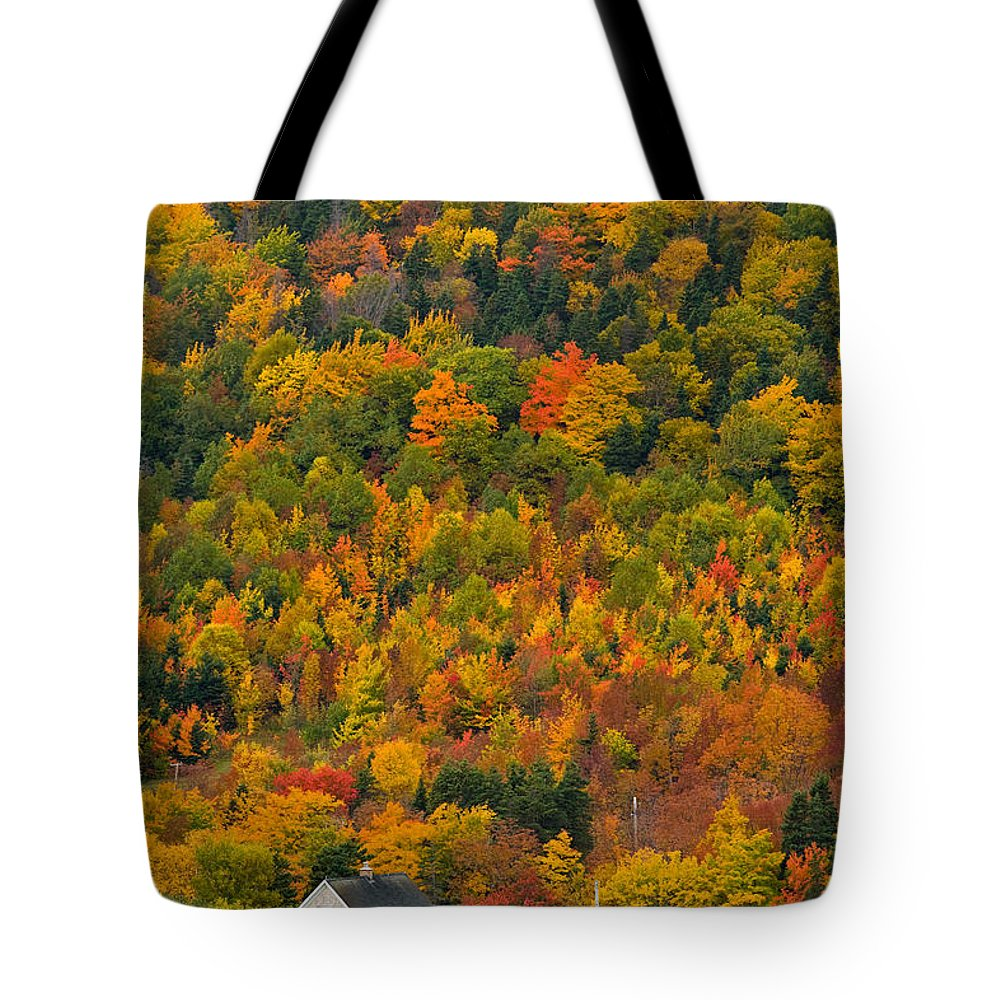 Autumn Colors Tote Bag featuring the photograph Cottage In Front Of Autumn Colours by John Sylvester