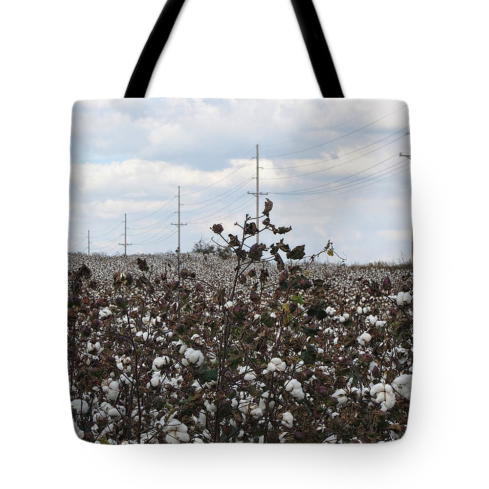 Cotton Tote Bag featuring the photograph Cotton Ready For Harvest In Alabama by Kathy Clark