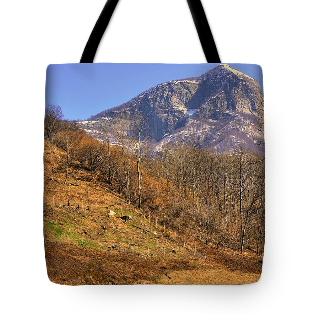 Cowhouse Tote Bag featuring the photograph Cowhouse And Snow-capped Mountain by Mats Silvan