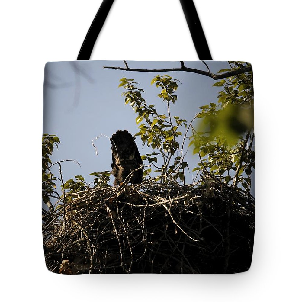 Tote Bag featuring the photograph Critic by Martin Cooper