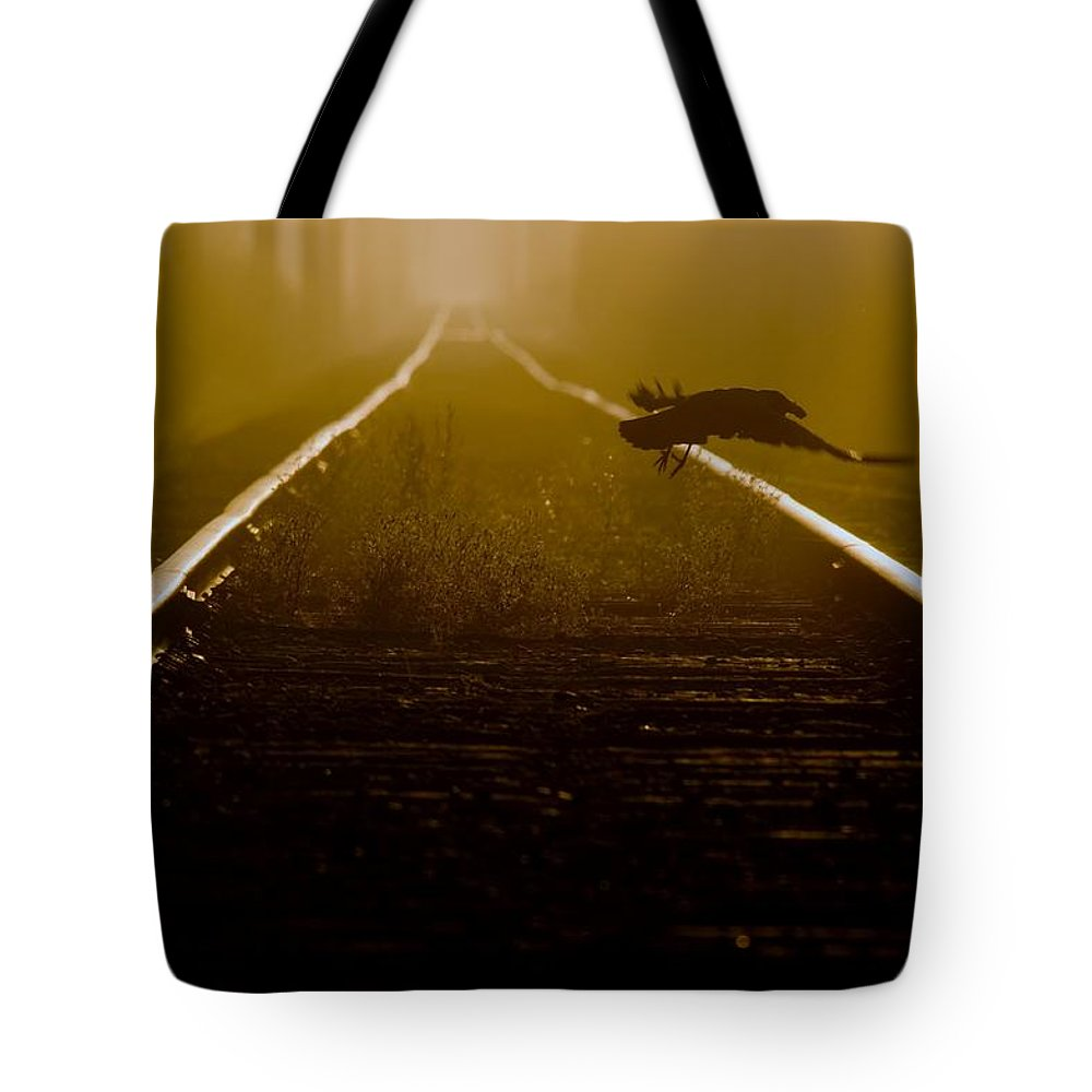 Crow Tote Bag featuring the photograph Crow With Mouse by Martin Cooper
