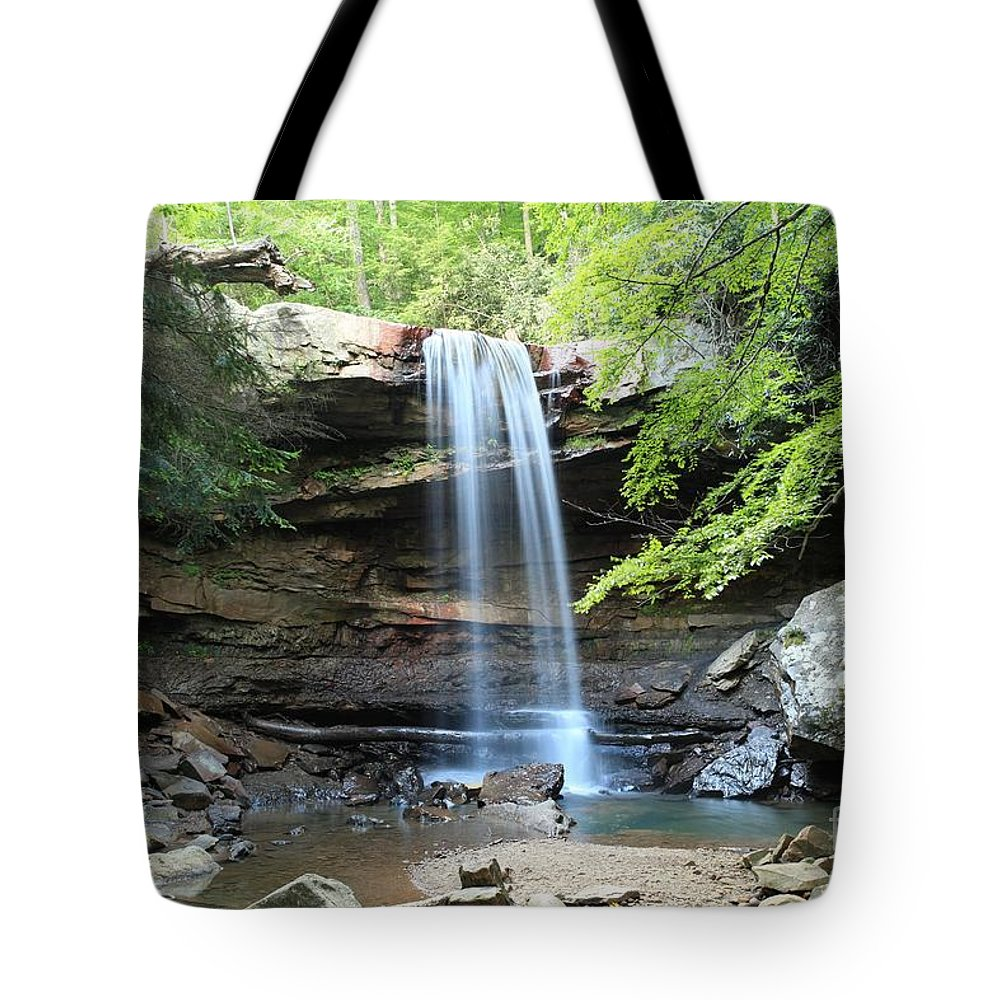 Ohiopyle State Park Tote Bag featuring the photograph Cucumber Falls Pool by Adam Jewell