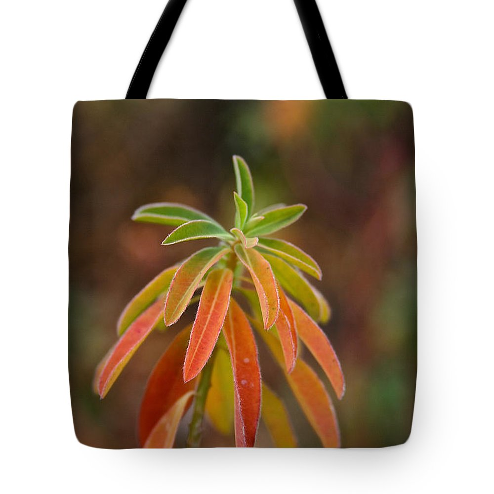 Flower Tote Bag featuring the photograph Cushion Spurge by Susan Herber