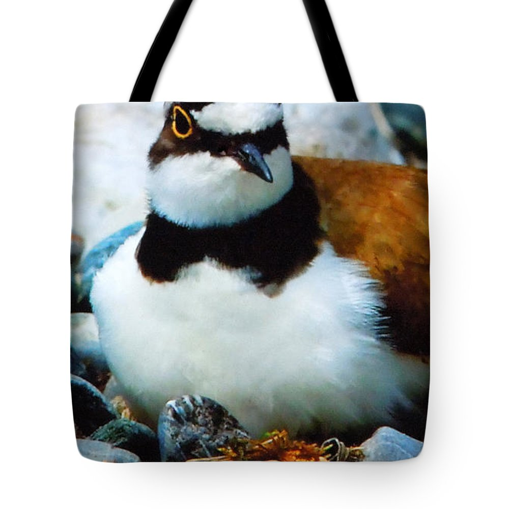 Colette Tote Bag featuring the photograph Cute Little Flyer by Colette V Hera Guggenheim