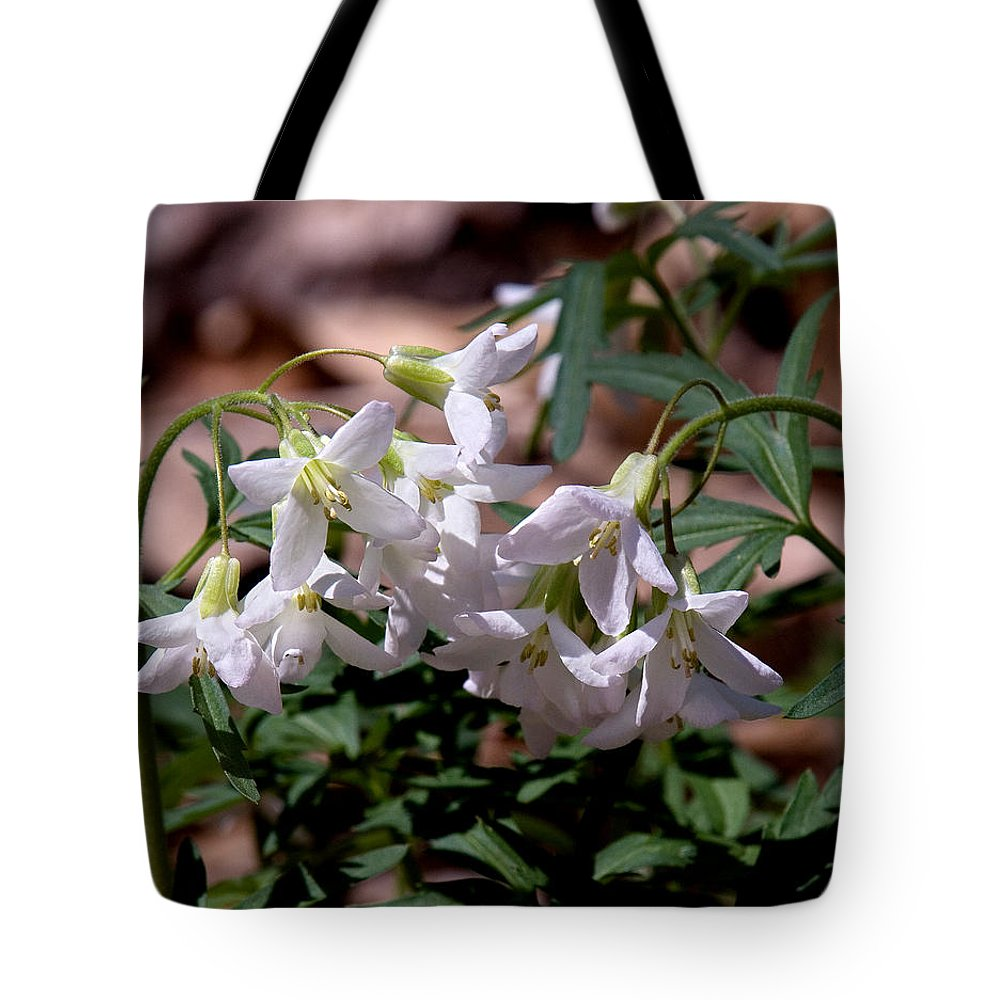 Wildflower Tote Bag featuring the photograph Cutleaf Toothwort Dspf048 by Gerry Gantt