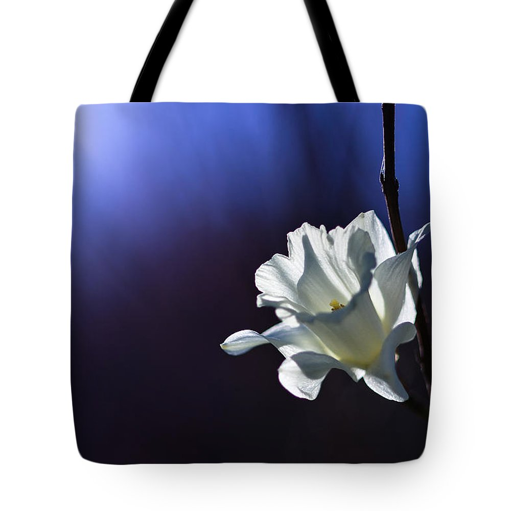 Spring Tote Bag featuring the photograph Daffodil Light by Lori Coleman