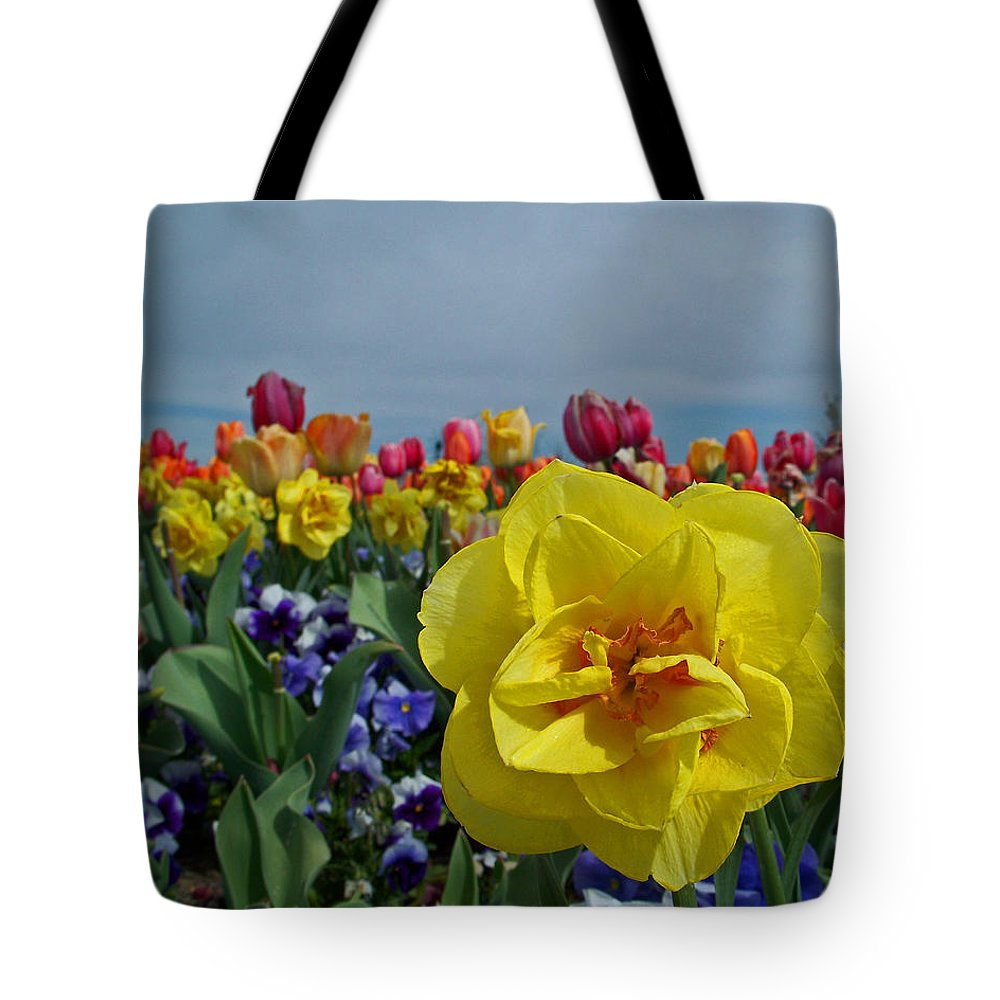 Daffodil Tote Bag featuring the photograph Daffodil Up Front by Tikvah's Hope