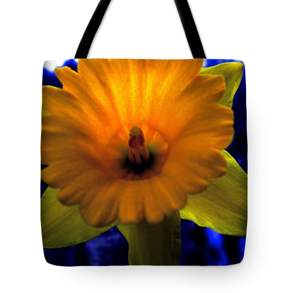 Daffodil Tote Bag featuring the painting Daffy Doll by Renate Nadi Wesley