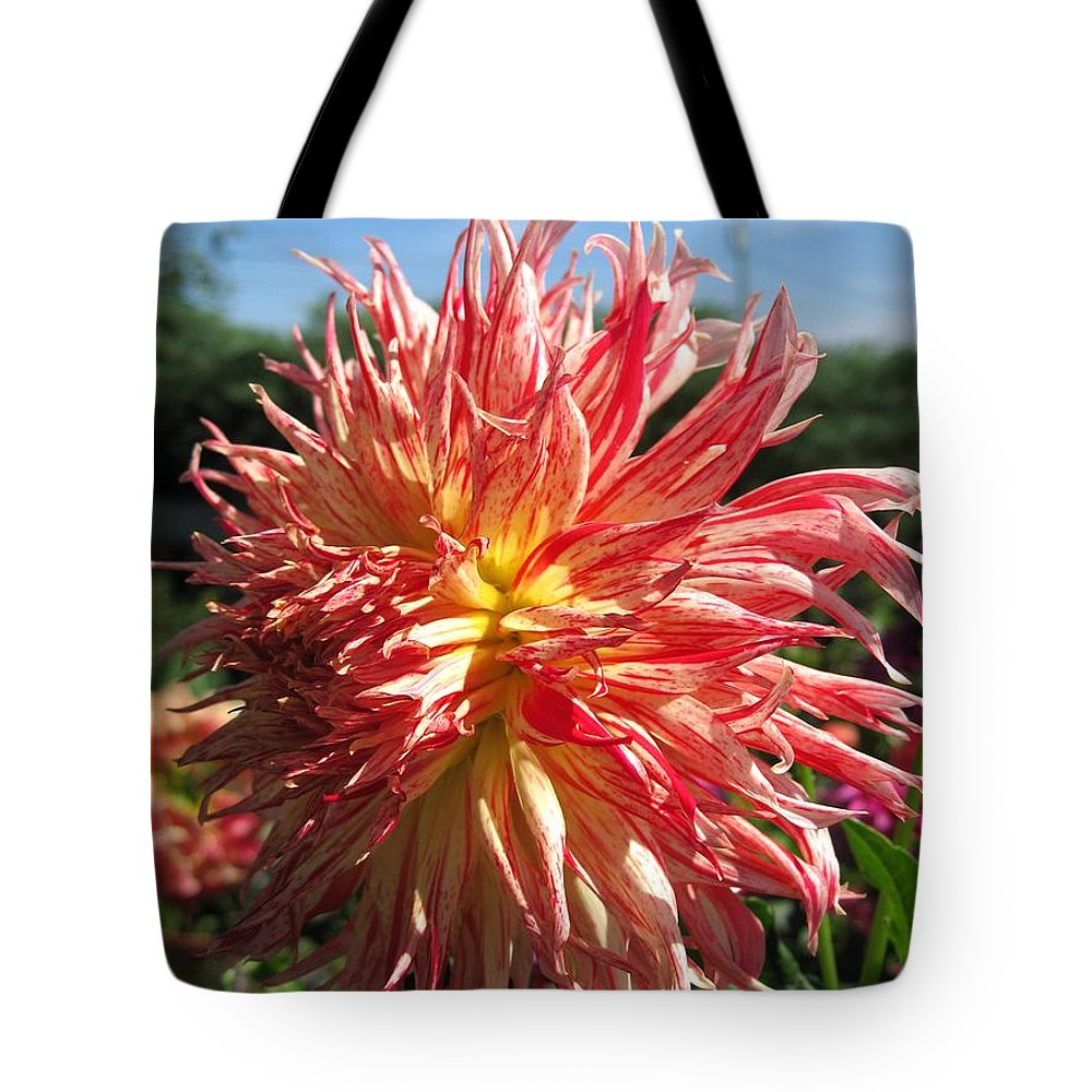 Dahlia Tote Bag featuring the photograph Dahlia Named Misty Explosion by J McCombie