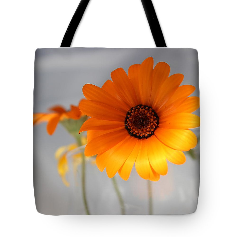 Floral Tote Bag featuring the photograph Daisies 4 by Kume Bryant