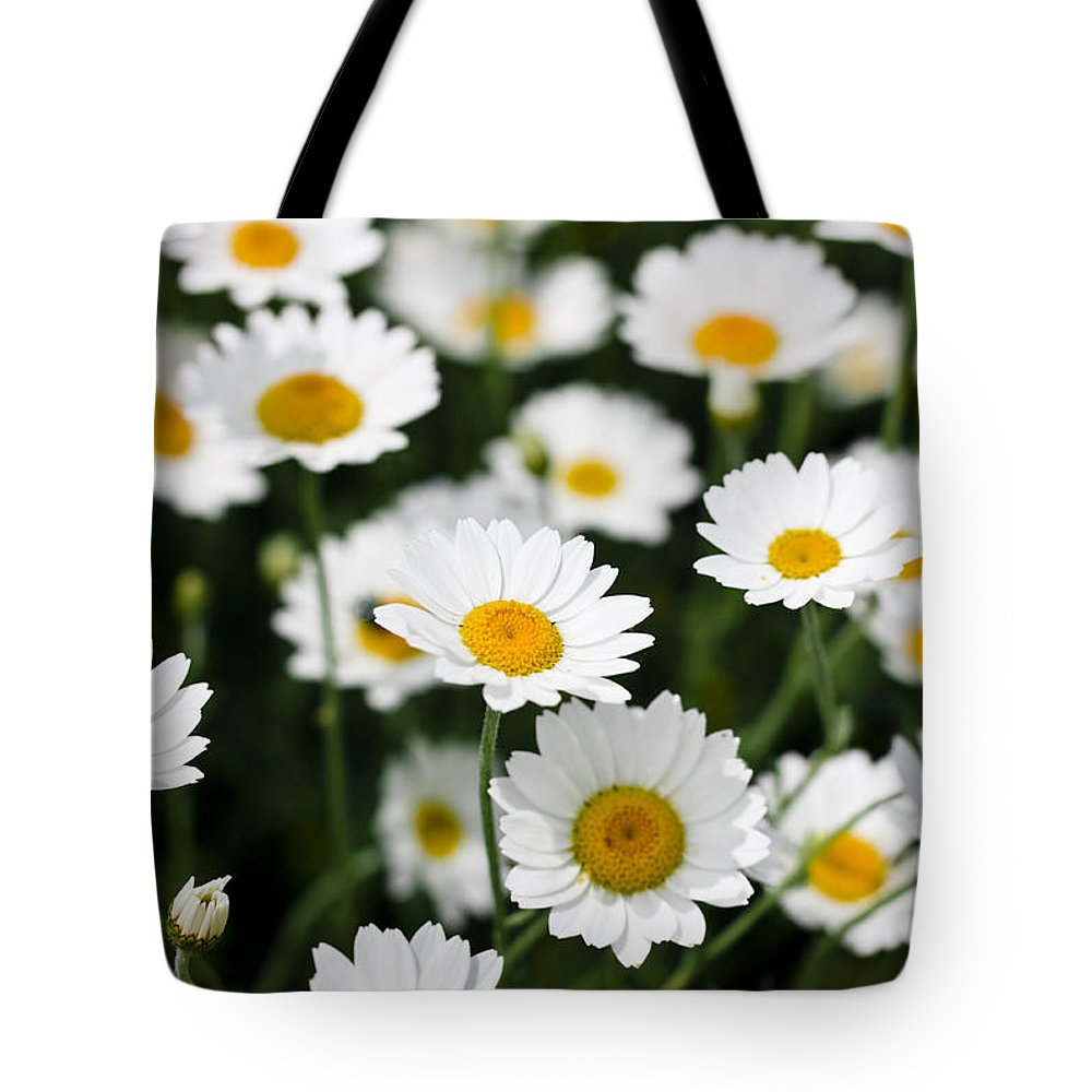 Daisy Tote Bag featuring the photograph Daisy In A Field by Simon Bratt Photography LRPS
