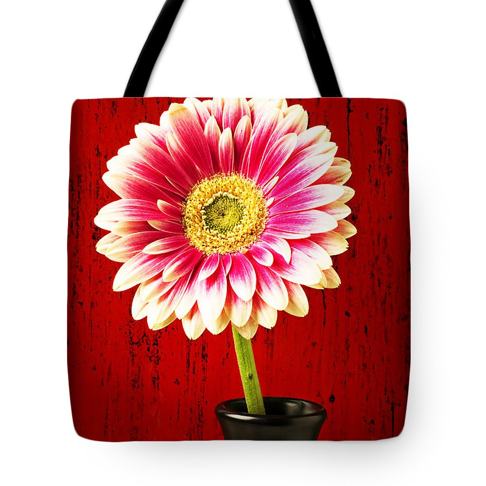 Flower Tote Bag featuring the photograph Daisy In Black Vase by Garry Gay