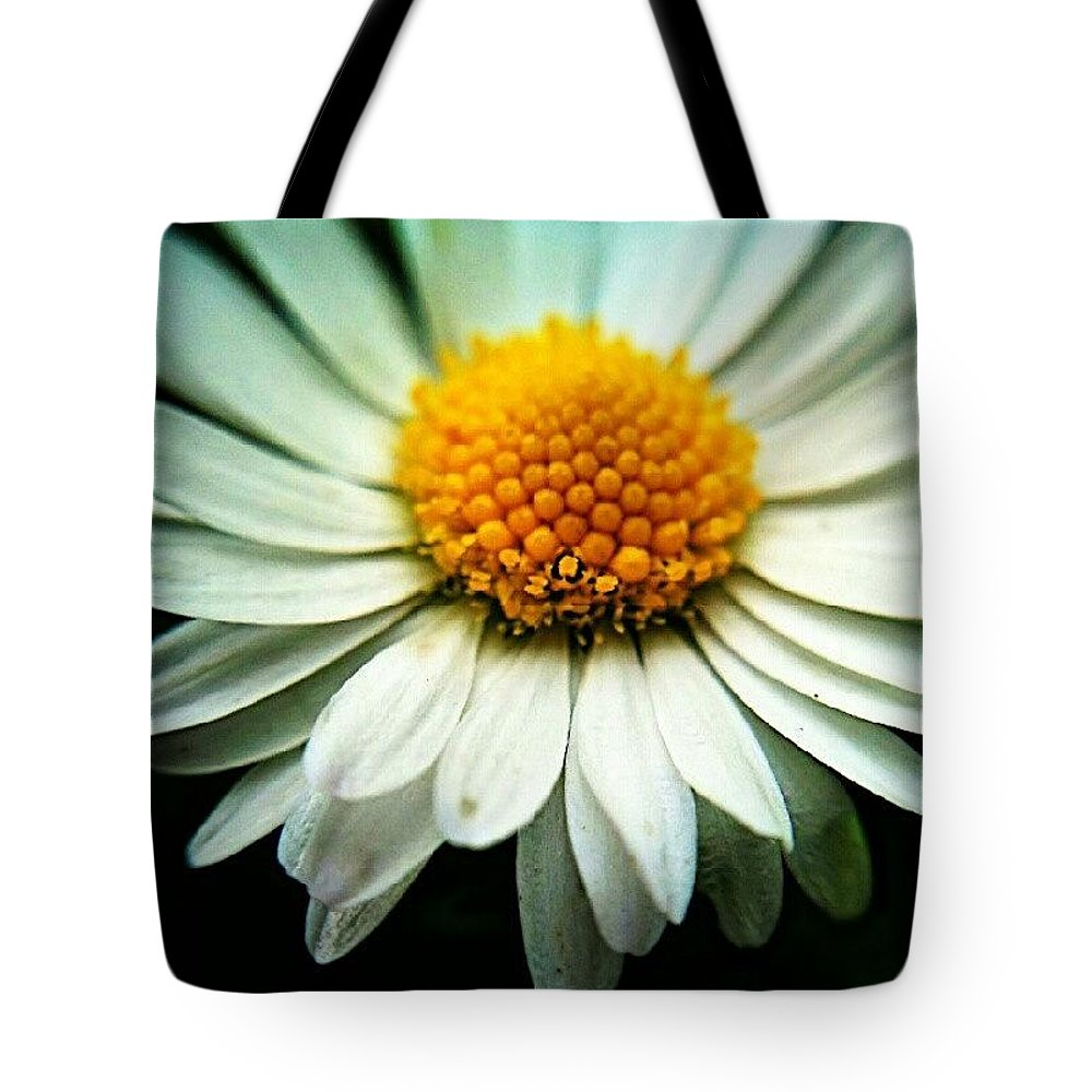Daisy Tote Bag featuring the photograph Daisy by Vicki Field