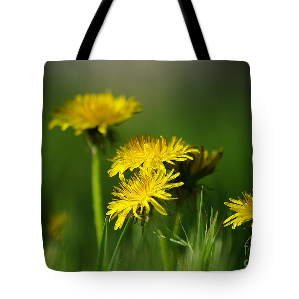 Photograph Tote Bag featuring the photograph Dandelion Magic by Vicki Pelham