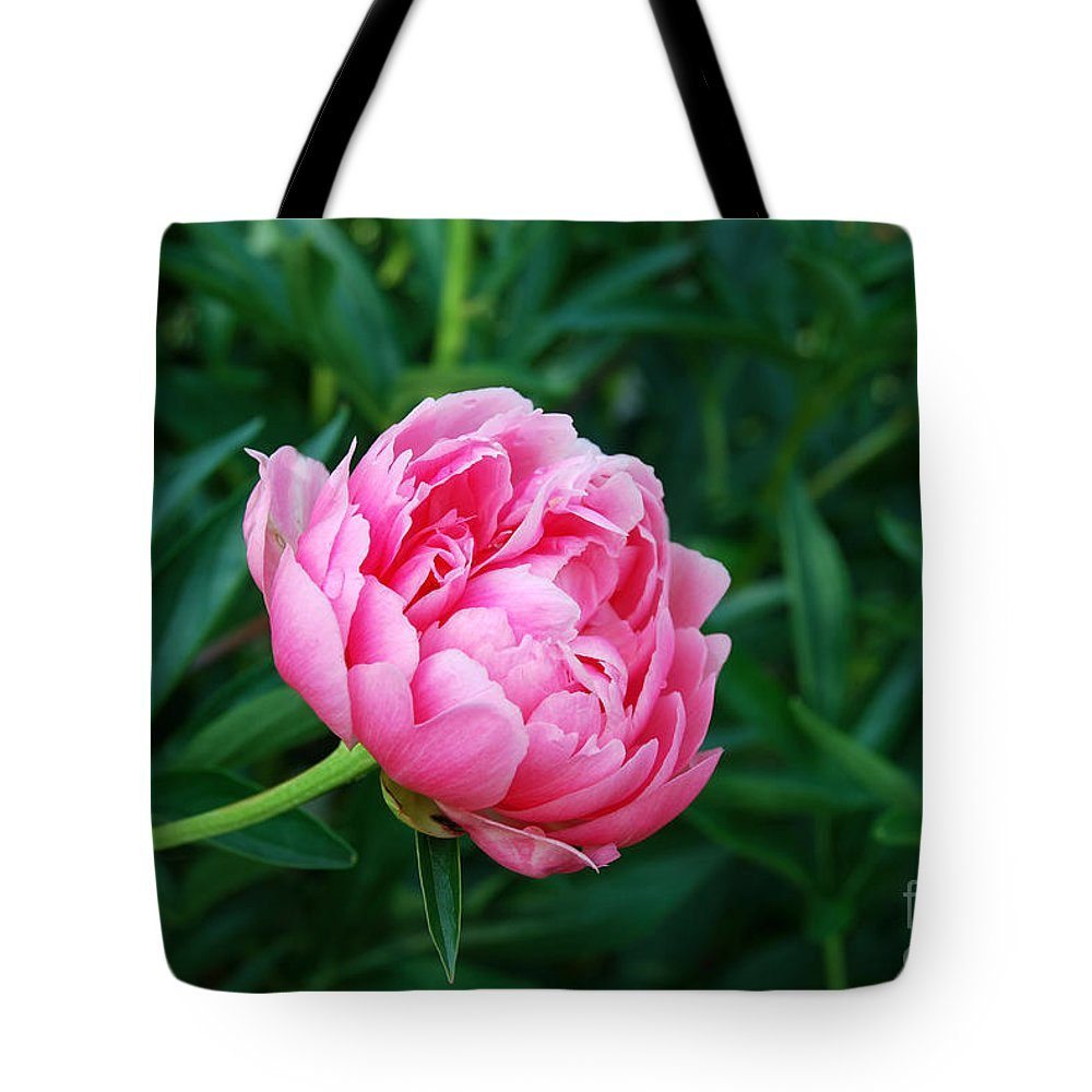 Dark Pink Peony Flower Tote Bag featuring the digital art Dark Pink Peony Flower Series 2 by Eva Kaufman