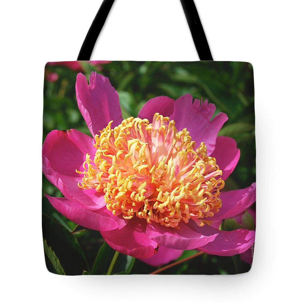 Dark Pink Peony Flower Tote Bag featuring the digital art Dark Pink Peony Flower Series 3 by Eva Kaufman