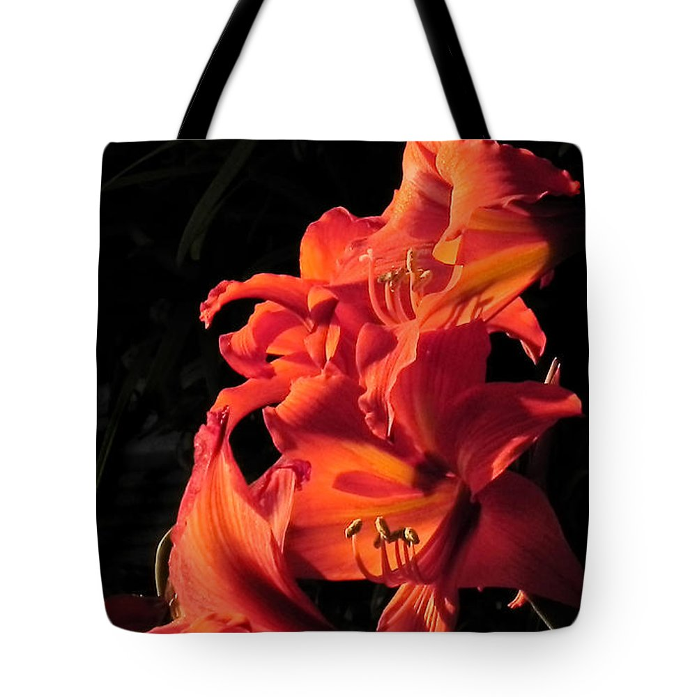 Flowers Tote Bag featuring the photograph Day Lily Flame by Francesa Miller