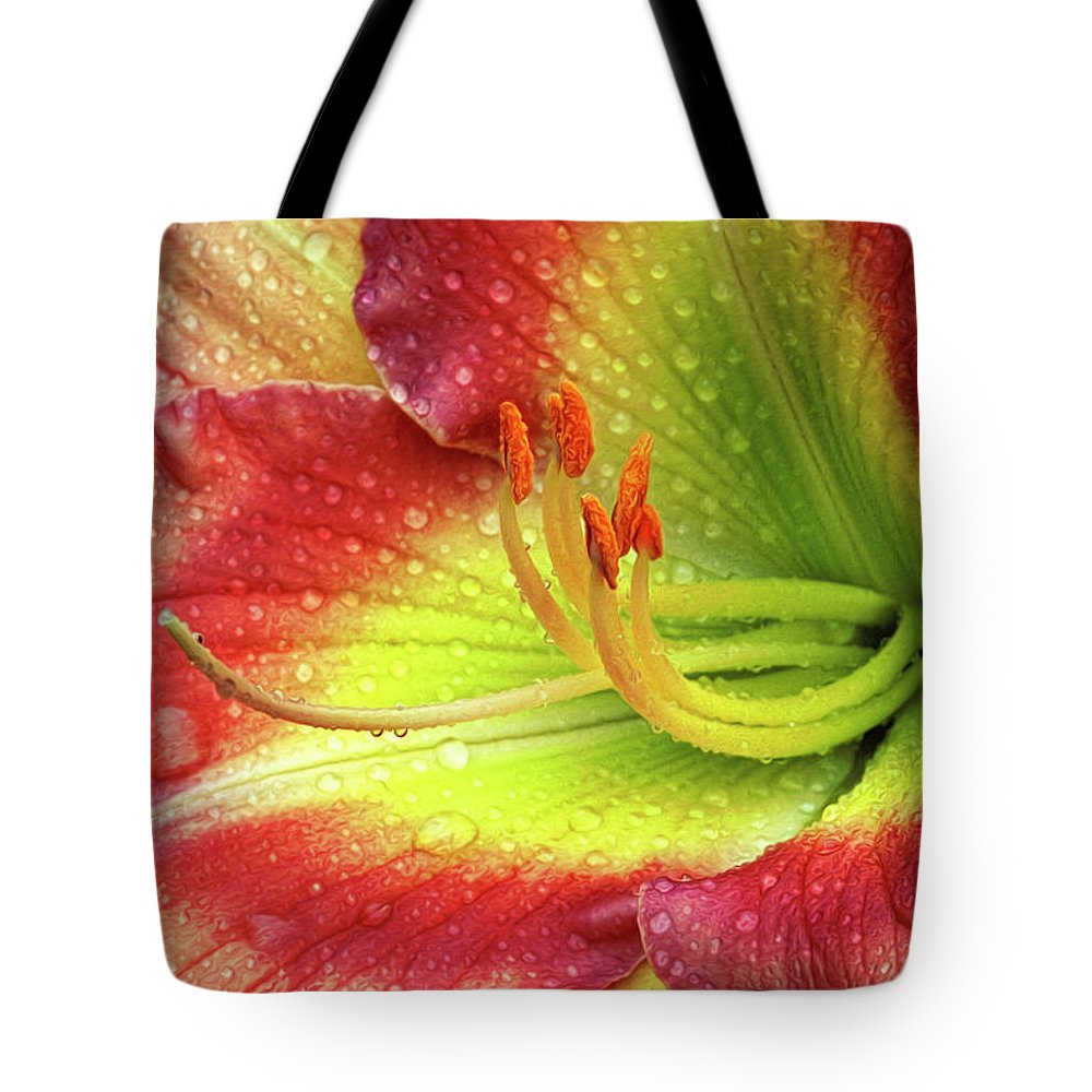 Daylily Tote Bag featuring the photograph Daylily by Dave Mills