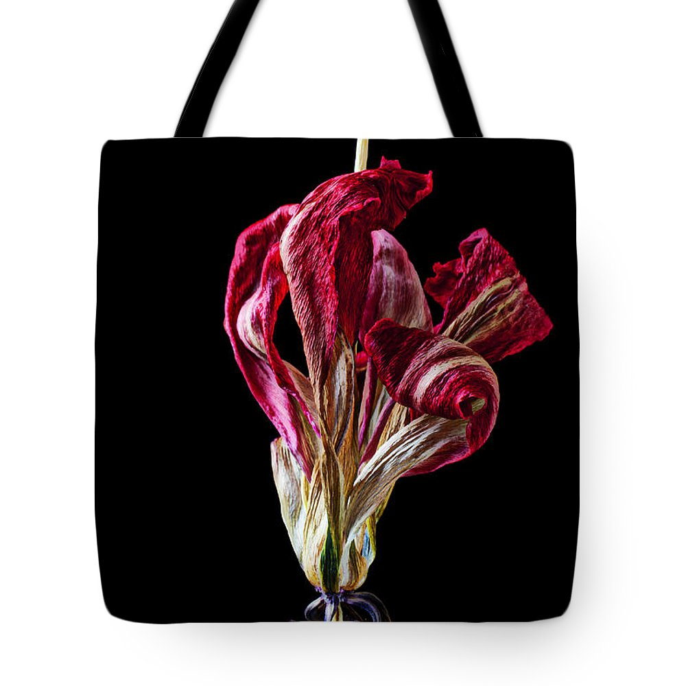Dead Tote Bag featuring the photograph Dead Dried Tulip by Garry Gay