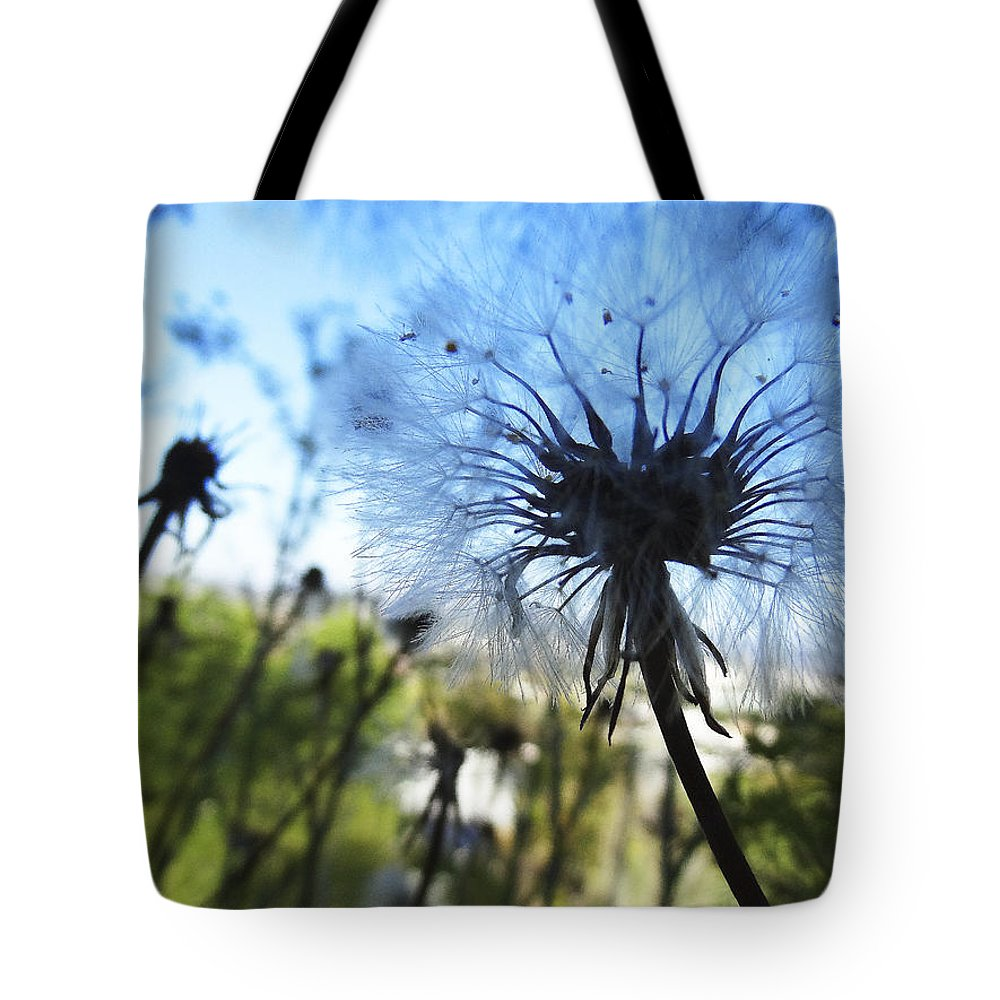 Dandelion Tote Bag featuring the photograph Dear Old Dandelion by Anne Mott