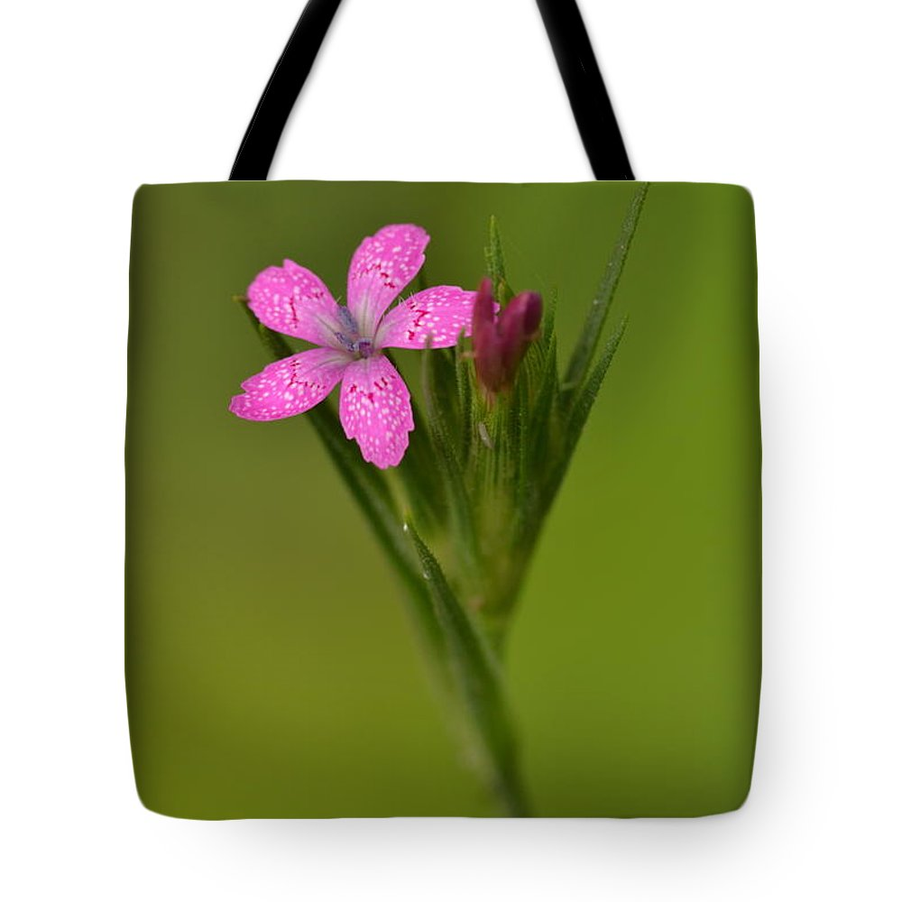 Deptford Pink Tote Bag featuring the photograph Deptford Pink by JD Grimes