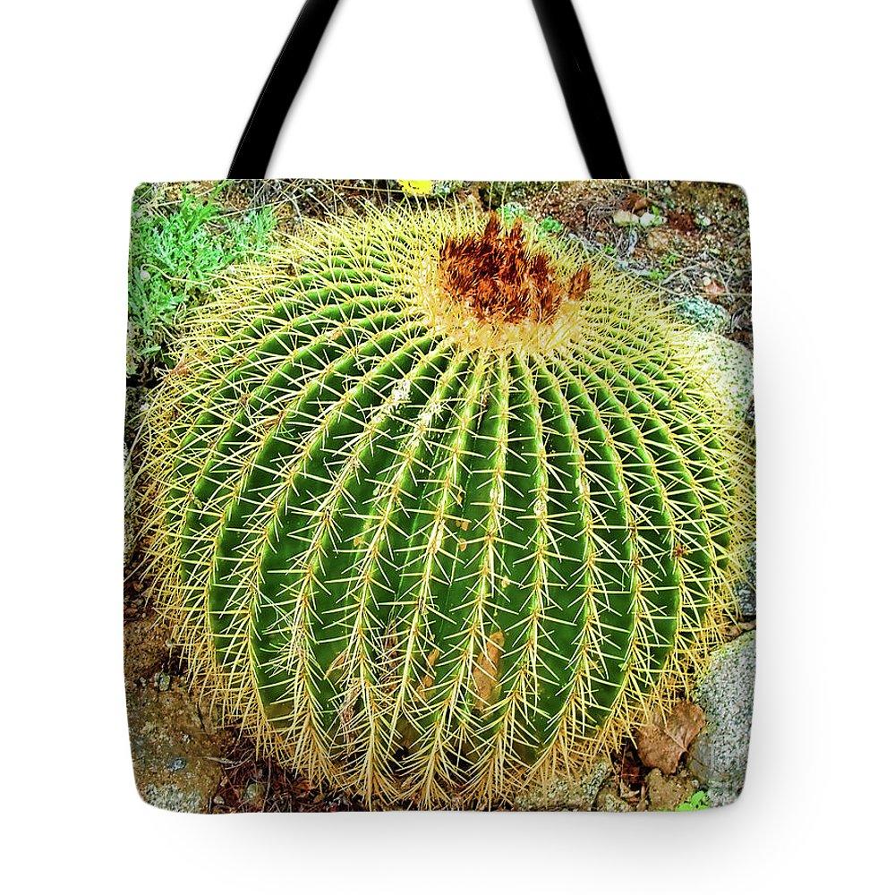 Desert Cactus Tote Bag featuring the photograph Desert Cactus by Mariola Bitner