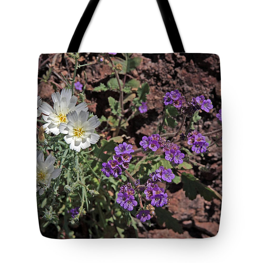Nature Tote Bag featuring the photograph Desert Chicory And Heliotrope by David Salter
