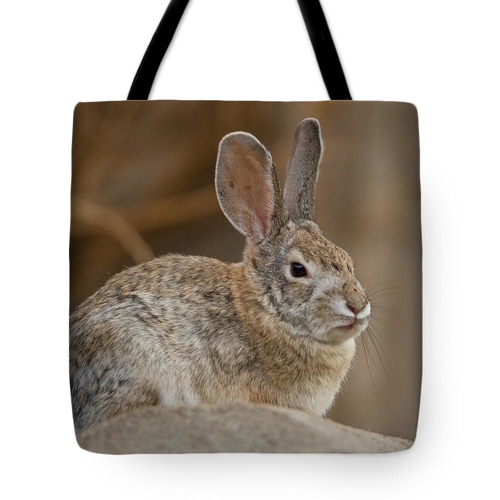 Photography Tote Bag featuring the photograph Desert Cottontail Rabbits by Joel Sartore