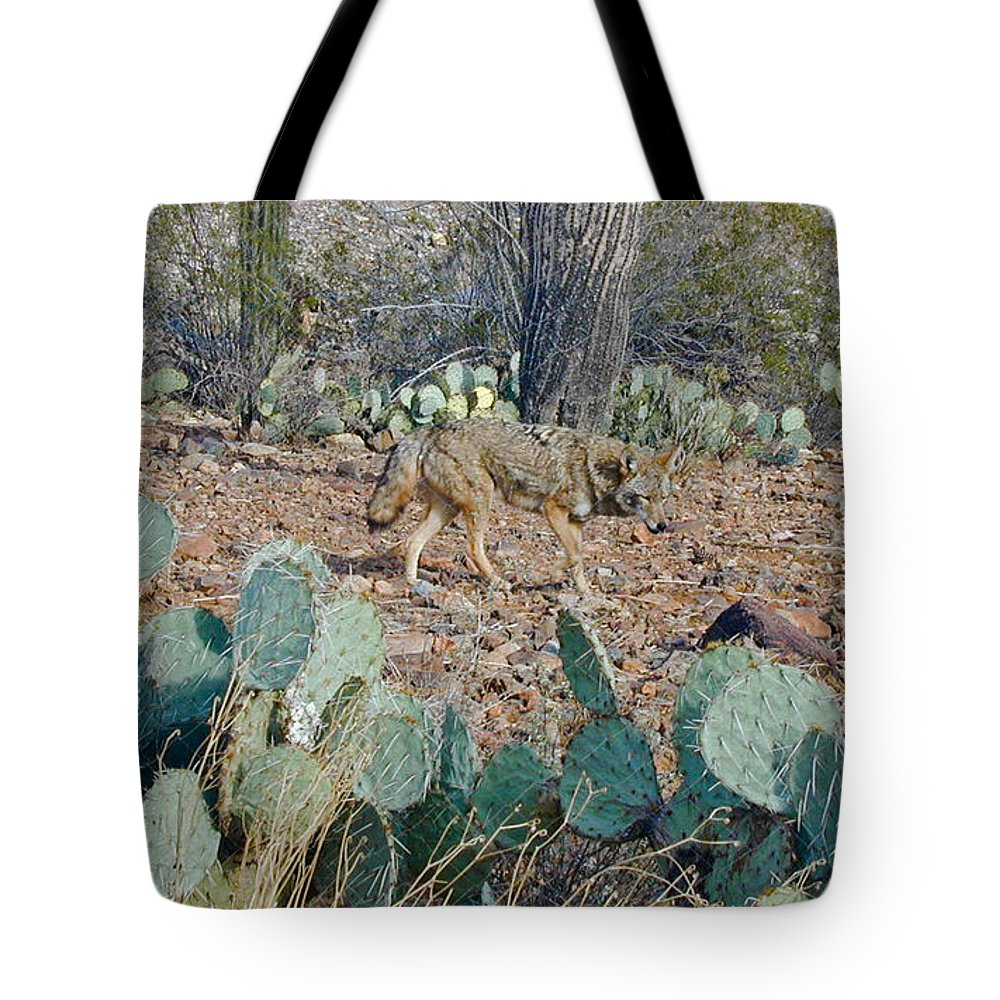 Desert Tote Bag featuring the photograph Desert Wolf by Douglas Barnett