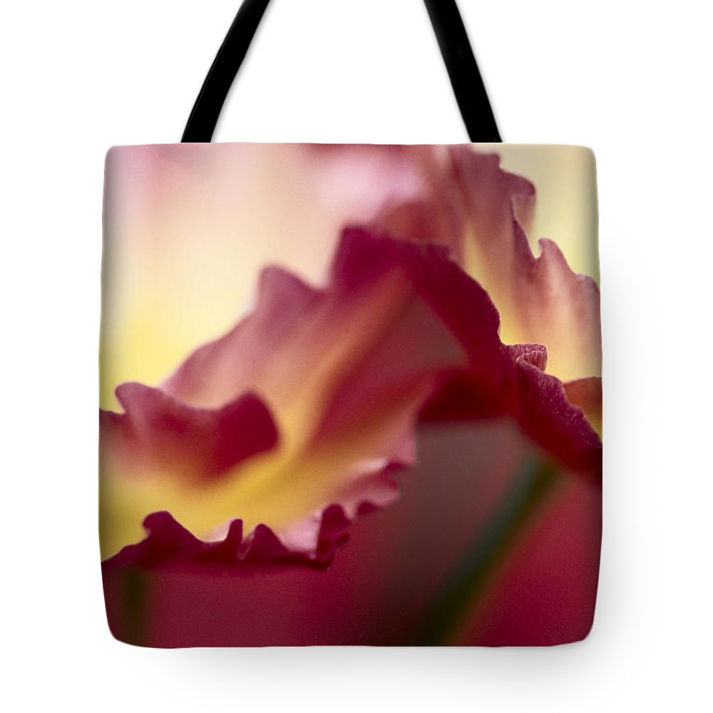 00283567 Tote Bag featuring the photograph Detail Of Crimson Colored Rose Petals by Jan Vermeer
