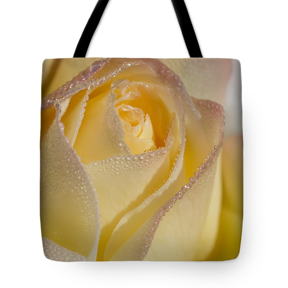 Rose Tote Bag featuring the photograph Dew Bejeweled Peace Rose by Kathy Clark