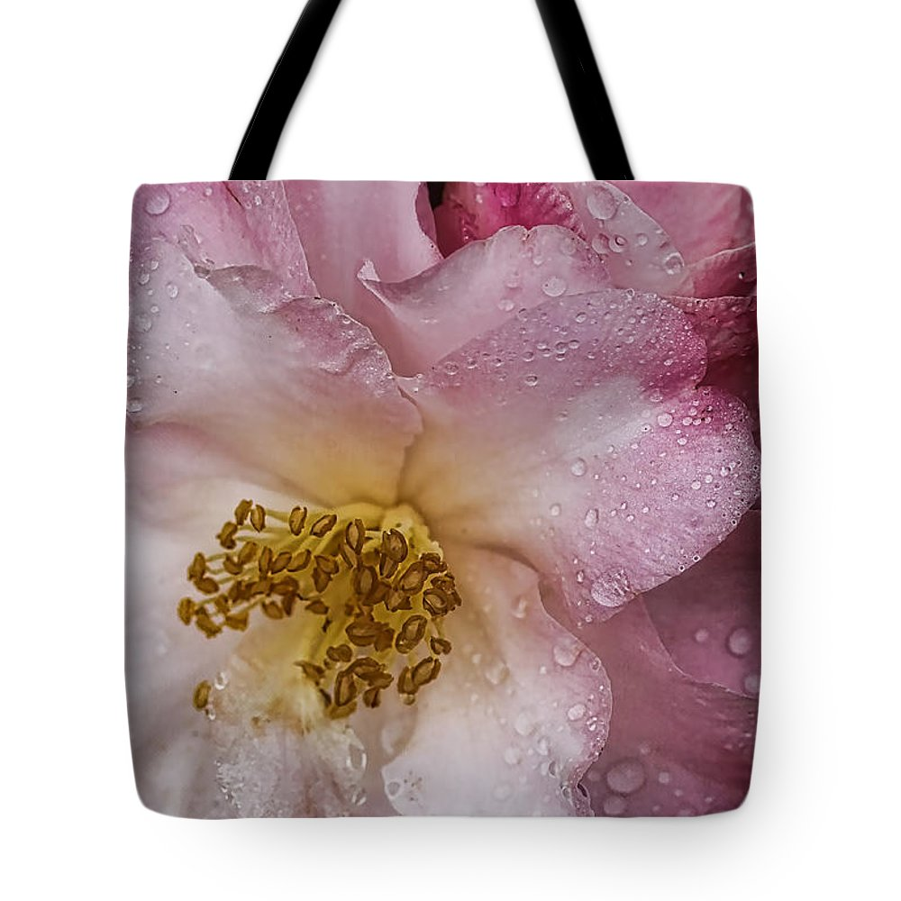 Flowers Tote Bag featuring the photograph Dew Drops On Pink by Deborah Benoit