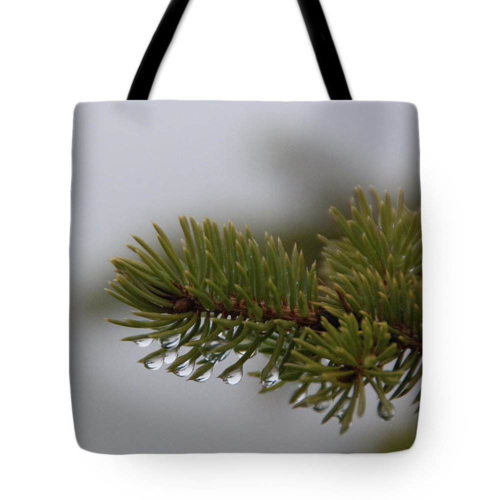 Tree Tote Bag featuring the photograph Dew by Guy Whiteley