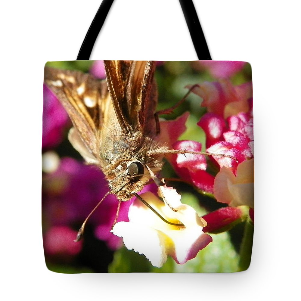 Bug Tote Bag featuring the photograph Dinner Time by Chad and Stacey Hall