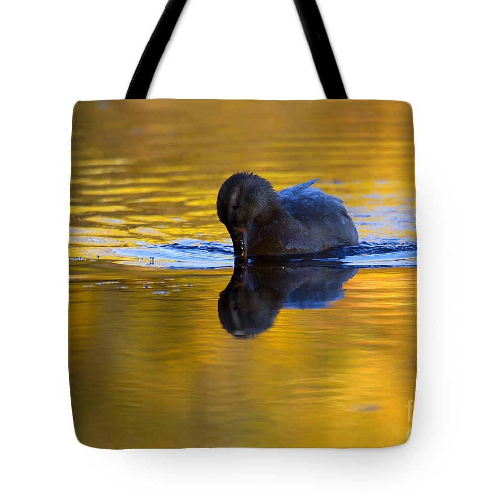 Dipping Tote Bag featuring the photograph Dipping In Gold by Mike Dawson
