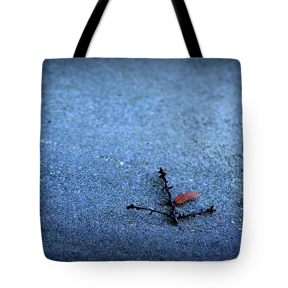 Blue Tote Bag featuring the photograph Direction by Shannon Tibbetts