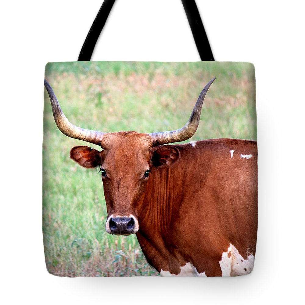 Texas Longhorn Tote Bag featuring the photograph Do Not Mess With Me by Kathy White