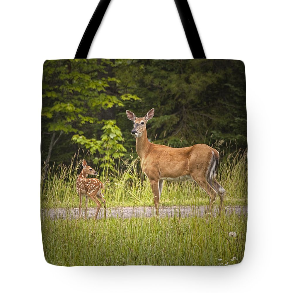 Art Tote Bag featuring the photograph Doe And Fawn Along A Roadside Near Iron Mountain Michigan. by Randall Nyhof