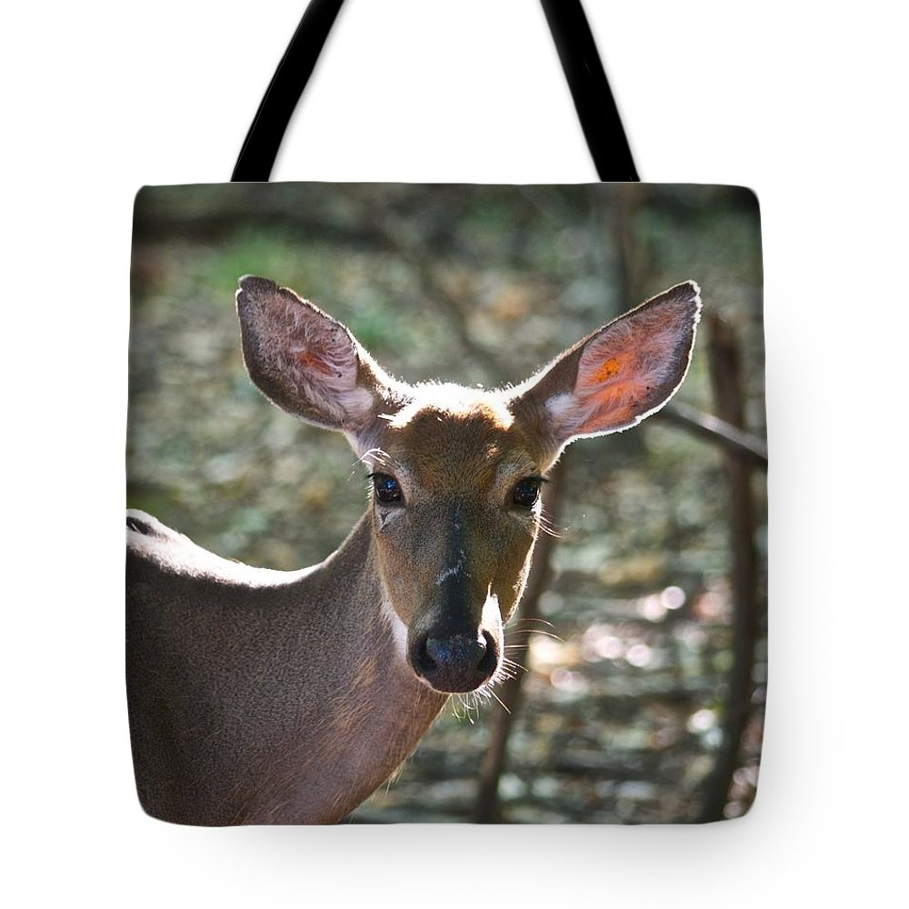 Animal Tote Bag featuring the photograph Doe Profile 9734 by Michael Peychich