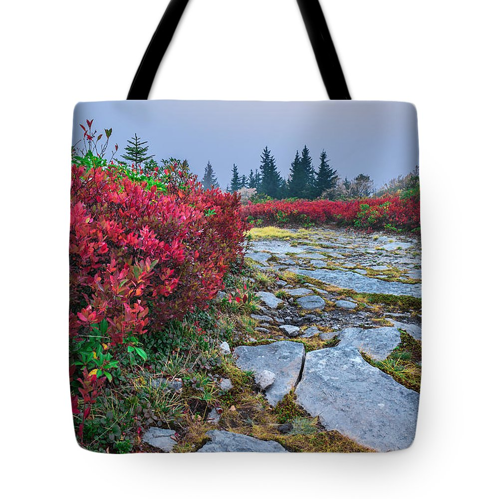 Dolly Sods Tote Bag featuring the photograph Dolly Sods Wilderness by Mary Almond